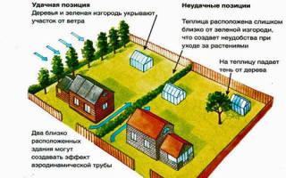 На каком расстоянии от забора можно строить теплицу из поликарбоната