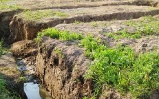 Ленточный фундамент на глинистой почве с высоким уровнем грунтовых вод