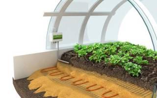 Как лучше поставить теплицу на землю или на фундамент?