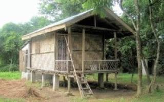 Как лучше строить дом на фундаменте или на сваях?