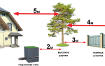 На каком расстоянии за забором можно сажать деревья и кустарники