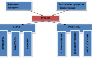 В виде каких щитов фундамент сибирской платформы выходит на поверхность